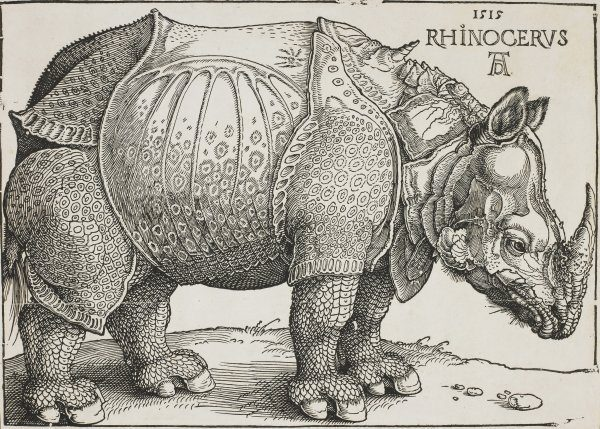 H.H. Rumbler: Albrecht Dürer, Nürnberg 1471 - 1528 Nürnberg, RHINOCERUS 1515, Holzschnitt 21,1 x 29,7 cm, Eine der populärsten Bildschöpfungen Dürer